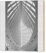 The Milwaukee Art Museum Wood Print by Mike McGlothlen