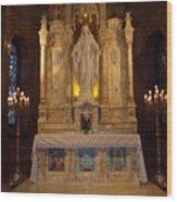 The Miraculous Medal Shrine 2 Wood Print