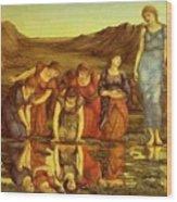 The Mirror Of Venus  Wood Print