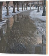 The Mirrored Streets Of Philadelphia In Winter Wood Print