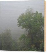 The Mists Wood Print