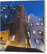 The Mit Stata Center At Night Kendall Square Cambirdge Ma Moon Front Wood Print
