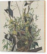 The Mockingbird Wood Print