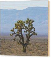 The Mojave Desert Wood Print
