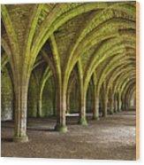 The Monks Cellarium, Fountains Abbey.  Wood Print