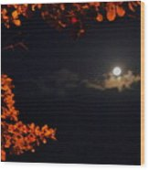 The Moon And Red Wood Print