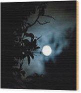 The Moon - La Luna 12 Wood Print
