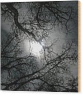 The Moon Prevails  Wood Print
