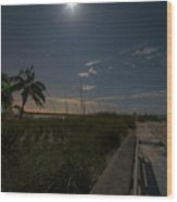 The Moonit Path To Fort Myers Beach Fort Myers Florida Wood Print