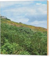 The Moor At Howth Wood Print