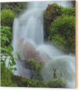 The Mossy Mist Wood Print