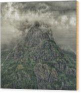 The Mountains Of Alaska  Wood Print
