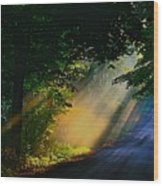 The Mourning Sun Wood Print