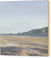 The Mumbles   Swansea Wood Print