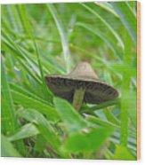 The Mushroom Wood Print