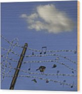 The Musical Barbed Wire Birds Wood Print