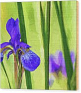 The Mystery Of Spring - Paint Wood Print