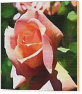 The Name Of A Rose Is Beauty Wood Print