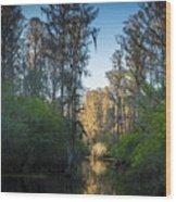 The Narrows Wood Print