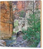 The Narrows Of The Virgin River  Wood Print