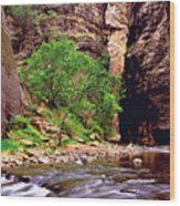 The Narrows Zion Wood Print