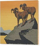 The National Parks Preserve Wild Life Vintage Travel Poster Wood Print