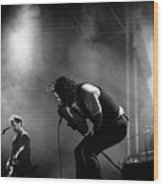 The National Performing At Hyde Park London Wood Print