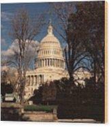 The Nation's Capitol Wood Print