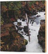 The Natural Bridge Gorge Wood Print
