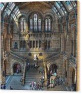The Natural History Museum London Uk Wood Print
