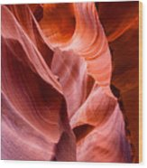 The Natural Sculpture 8 Wood Print