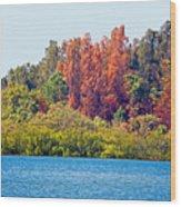 The Nature Coast Wood Print