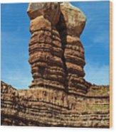 The Navajo Twin Rocks Wood Print