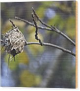 The Nest 2 Wood Print