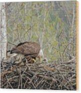 The Nest Wood Print