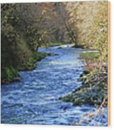The Nestucca River Wood Print