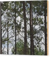 The Network Wood Print