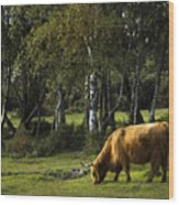 the New forest creatures Wood Print