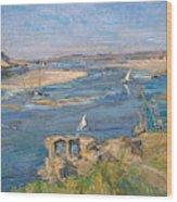 The Nile Near Aswan Wood Print