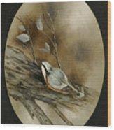 The Nuthatch Wood Print