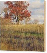 Red Oak Under November Skies Wood Print