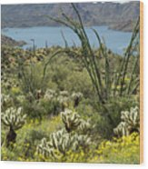 The Ocotillo View Wood Print