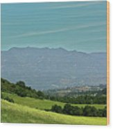 The Ojai Valley Wood Print