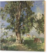 The Old Ash Tree Wood Print by Edward Arthur Walton