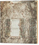 The Old Governor's Mansion Wood Print