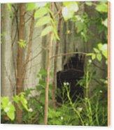 The Old Homestead #10 Wood Print