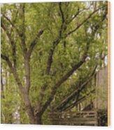 The Old Homestead #2 Wood Print