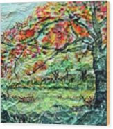 The Old Maple Tree Wood Print