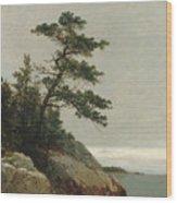 The Old Pine, Darien, Connecticut, 1872  Wood Print