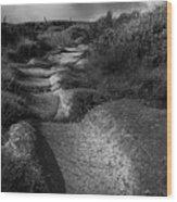 The Old Stone Track Monochrome Landscape Wood Print